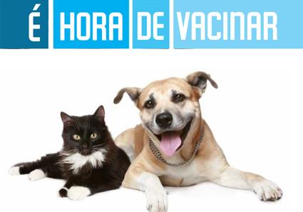 Resultado de imagem para vacinaçao de caes e gatos